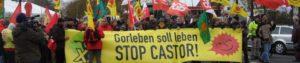 cropped-Gorleben-Castor-November-2012012.jpg