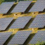 """Solaranlagen sind für Vattenfall """"Monster"""". Foto: Dirk Seifert"""