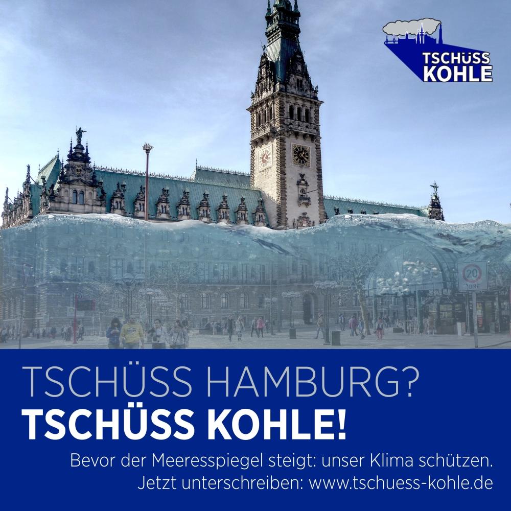 Volksinitiative Tschüss Kohle: Politik, Hamburger Klimaschutz und eine Berliner Kohlekommission